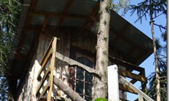 domek-na-drzewie2